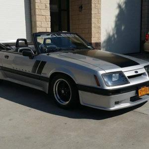 Door Decals – fits 1987-1993 Ford Mustang Saleen Fox Body